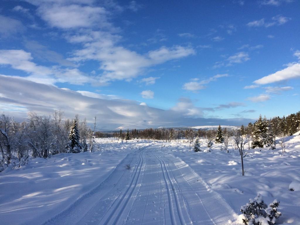 vinterbilde1
